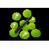Smart Tag NFC Crypté Loxone domotique est au meilleur prix sur https://boutique.sdi31.fr